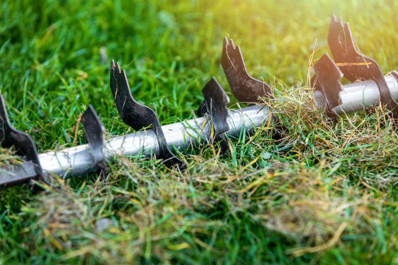 Using power rake to detatch lawn for spring planting